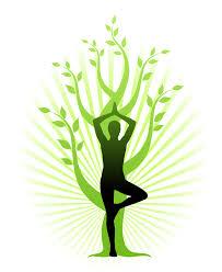 image_yoga